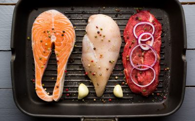 Muscle Building Diet and Nutrition